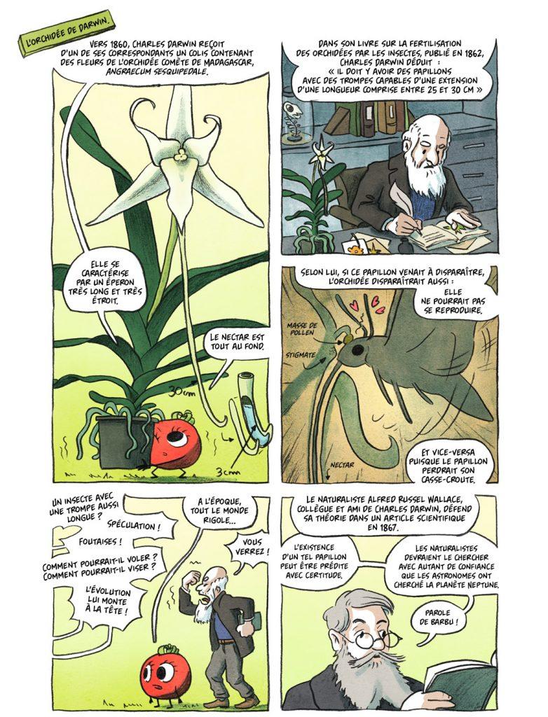 Plantes étonnantes (ou belles ou intéressantes ou marrantes ou ce que vous voulez) - Page 2 Ep7_web_double7bis1-782x1024